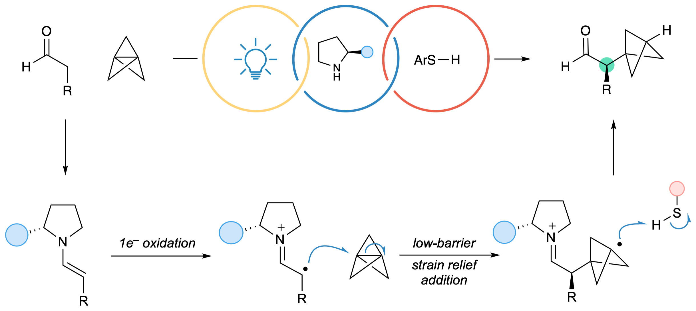 Our three-component organophotoredox reaction generates 𝛼-chiral BCPs from [1.1.1]propellane