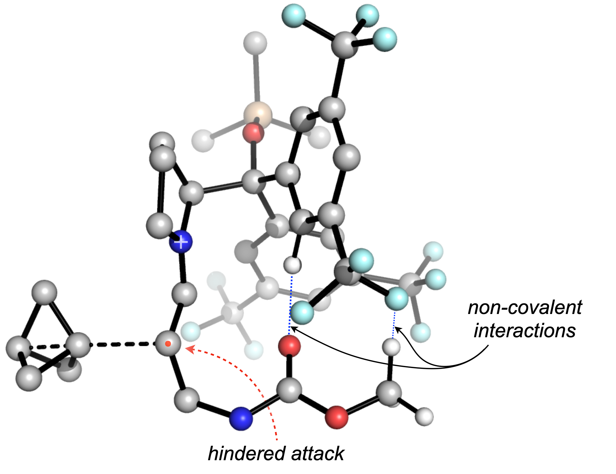 We used DFT to develop a selectivity model, which showed us the importance of non-covalent interactions on the attack trajectory.